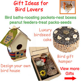 Garden Bird Hampers